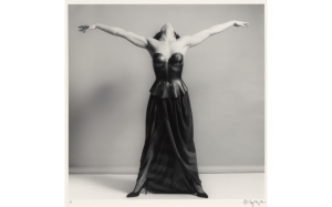 Lisa Lyon by Robert Mapplethorpe. © Robert Mapplethorpe Foundation. Gift of The Robert Mapplethorpe Foundation to the J. Paul Getty Trust and the Los Angeles County Museum of Art.